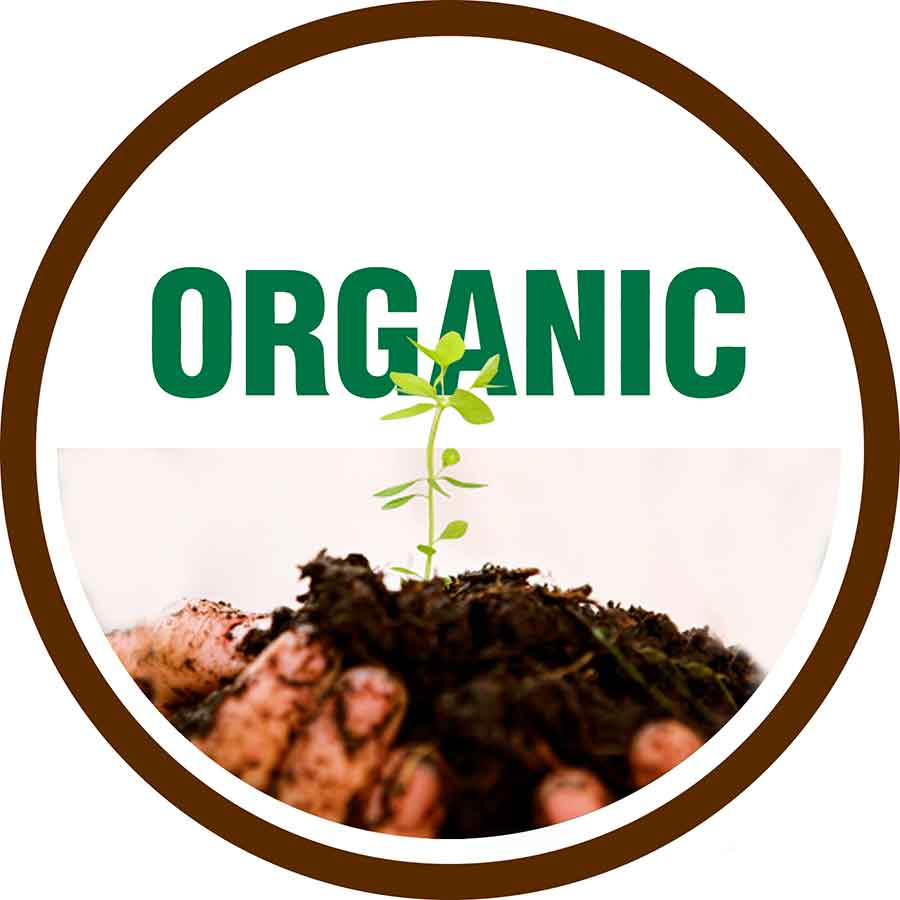 organic versus non organic food and food Organic food is food produced by methods that comply with the standards of organic farming  and continued to outpace sales of non-organic food in 2003 organic products were available in nearly 20,000 natural food stores and 73% of conventional grocery stores.